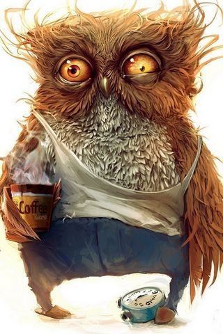 Funny-owl