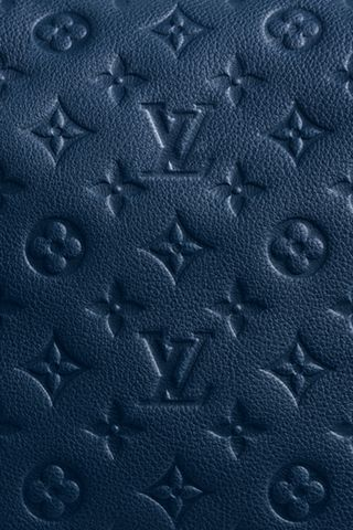 Louis Vuitton 3