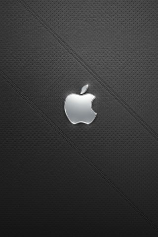 APPLE LOGO SILVER