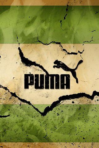 प्यूमा