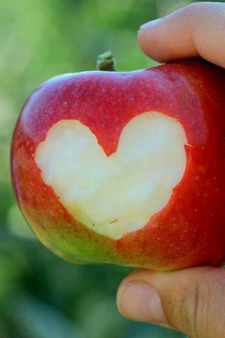 애플의 심장