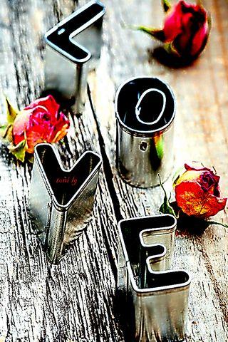 Love By Toni Lg