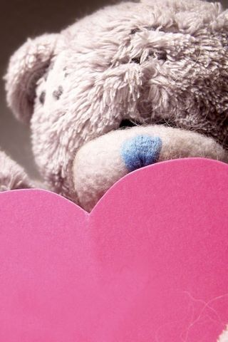 Teddy And Pink Heart