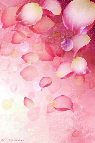 Pembe Gül Yaprakları