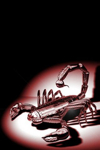 Scorpion Steel