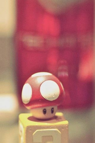 Lomo Mushroom