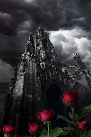 Dark Castle And Roses