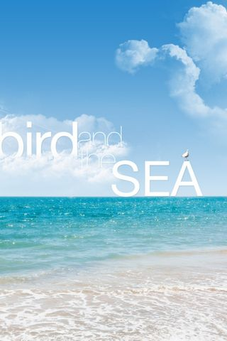 Bird And The Sea