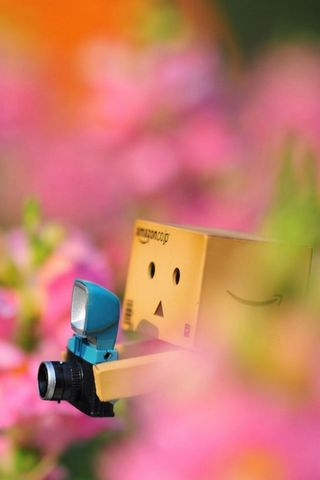 Danbo Lost In The Flowers