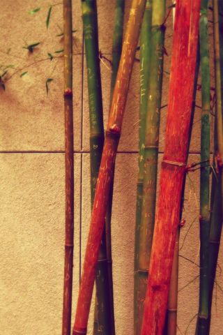 Vintage Bamboo