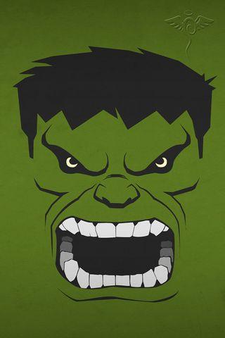 Heroes Hulk