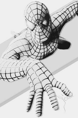 الرجل العنكبوت