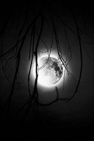 Full Moon....