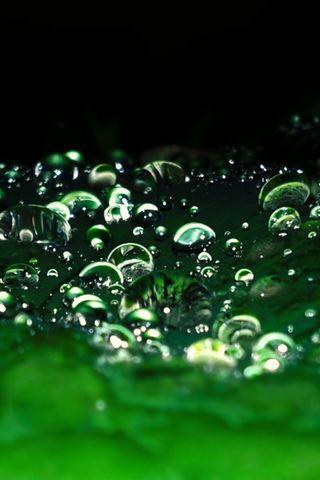 Rain-Drops-2