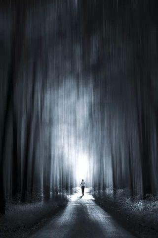 Dumanlı-Orman