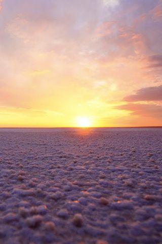 सागरी सागरी सूर्यमाले