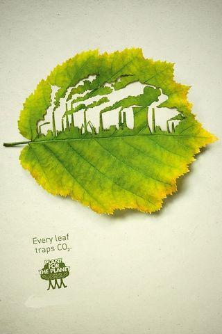 Eco Concept Green