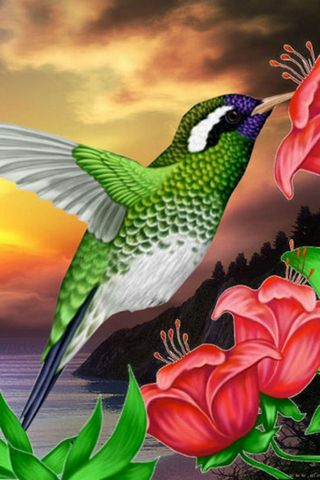 Cool Bird & Flower