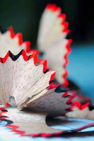 Pencil Flower HD