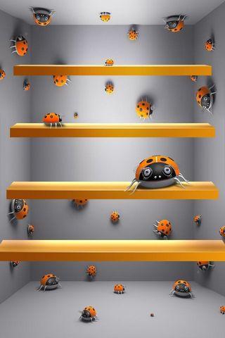 Bugs Shelf