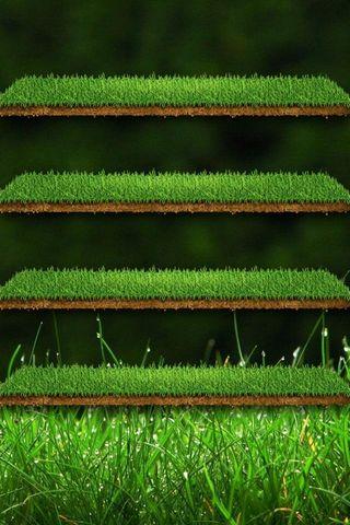 緑の草の棚
