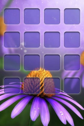Daisy - Home Screen - IP4