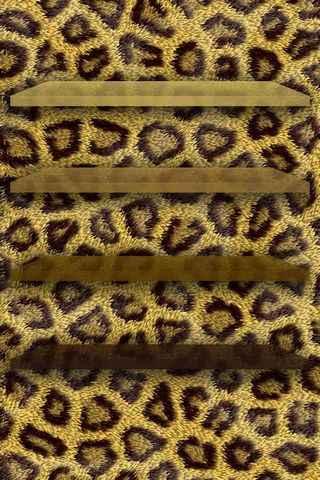 Leopard - Home Screen - IP4
