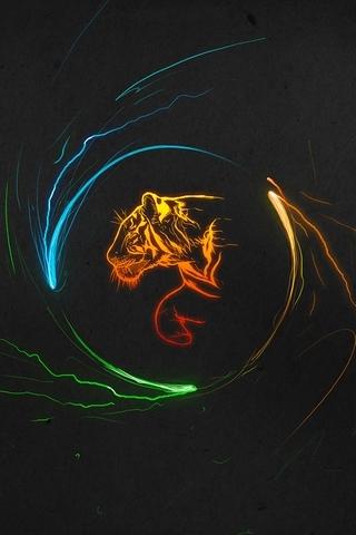 Multicolor-Tigers