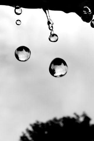 Gota de chuva