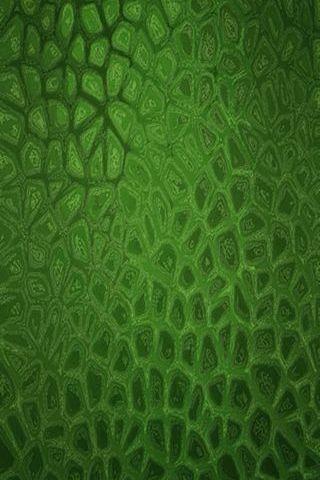 Peau d'alligator vert