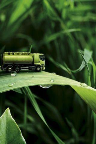 トラック上の草