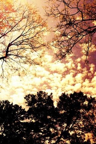 Красочный-Sky