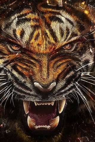 Tiger-backgrounds
