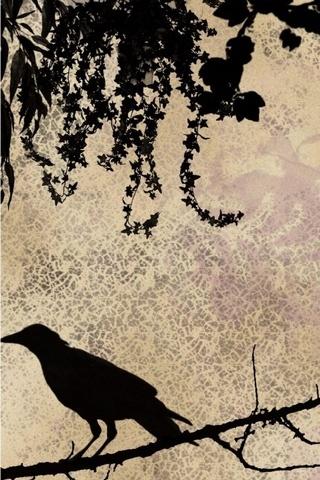 Crow Göz Fantezi