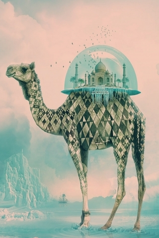 Taj Mahal on Camel