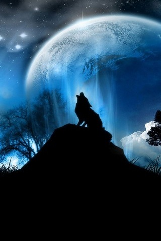Wolf Under The Moon
