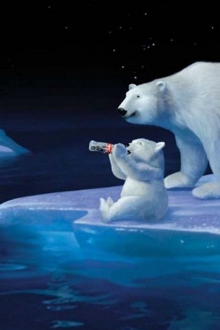Bear Drink Cola