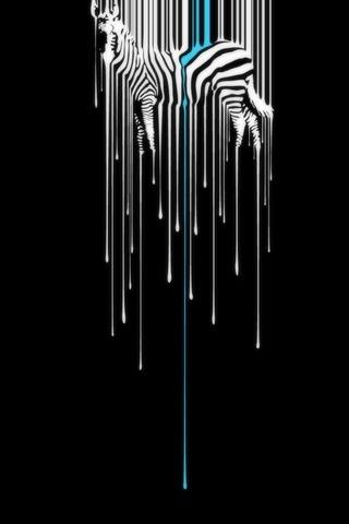 Zebra Melting - IPhone5
