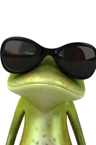 Frog In Sunglasses