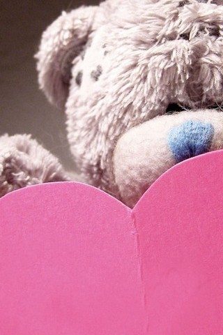 Teddy & Heart