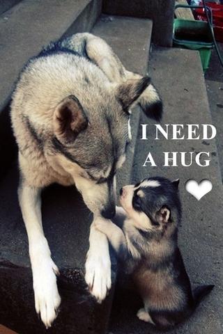 나는 포옹이 필요해.