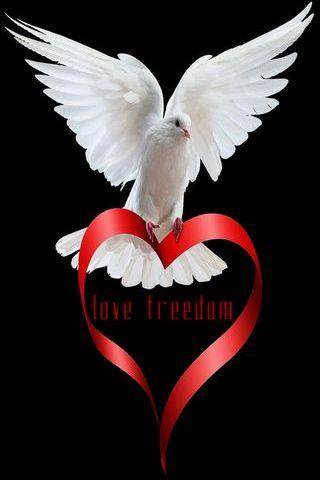Aimer la liberté
