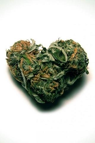 Сорняк сердца