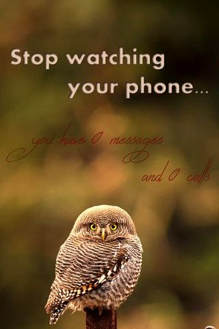 Stop Watching