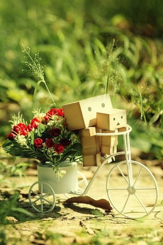 The-Danbo-happy-time