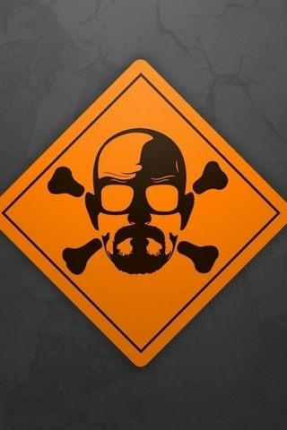 Breaking-bad-skull
