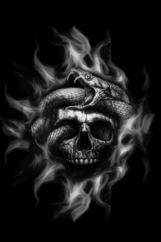 Scull And Snake