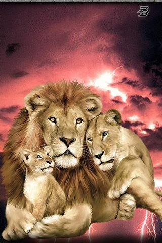สิงโต 1