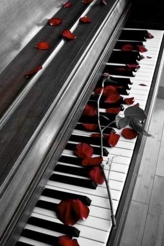 The Rose On The Piano