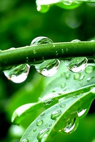 HD Water Drop